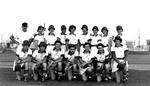 1944 - Grand Rapids Chicks by Elizabeth Mahon