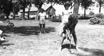 1946 - Blue Sox Teammates at Joyce Hill's family farm by Elizabeth Mahon