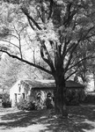 Little Chapel with Tree in Foreground ca 1964