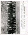 Guy Bernard Funderburk Papers - Accession 524