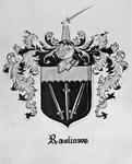 Rawlinson Family History - Accession 673 - M295 (346)
