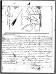 Chesnut-Miller-Manning Papers - Accession 771