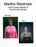 South Carolina Psychological Association Records - Accession 1207