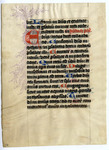 Psalter- Med MS 10A by Unknown