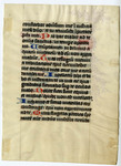 Psalter- Med MS 10B by Unknown