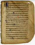 Monastic Psalter- Med MS 11A by Unknown