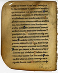 Monastic Psalter- Med MS 11B by Unknown