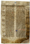 De Proprietatibus Rerum- Med MS 16B