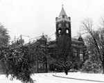 Tillman in Snow, Dec. 24, 1947