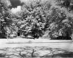 Bancroft Hall Rear View, ca. 1956